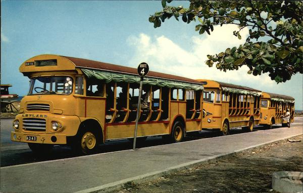 Buses in a Row Barbados West Indies Caribbean Islands