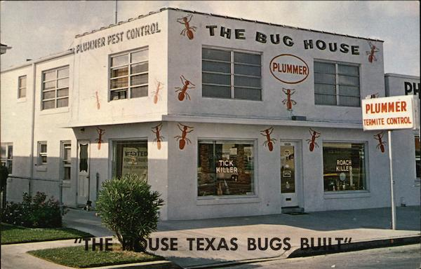 The House Texas Bugs Built Galveston