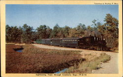 Sightseeing Train Through Cranberry Bogs Postcard
