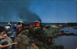 Going Thru the Cranberry Bogs - Edaville Railroad Postcard