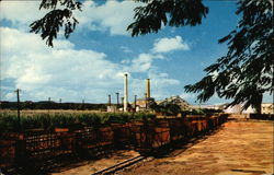 "View of ""Central Cambalache"", a Sugar Mill"