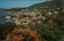 View of Charlotte Amalie, USVI