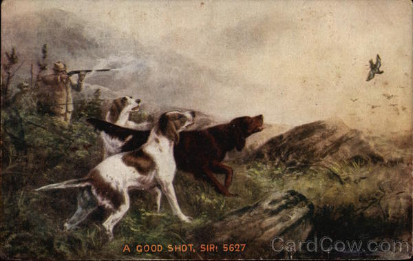 A Good Shot - Hunter and Dogs Hunting