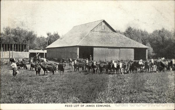 Feed Lot of James Edmunds Cowboy Western