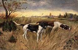 Two Hunting Dogs in Field