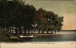 Five Mile Point on Olsego Lake