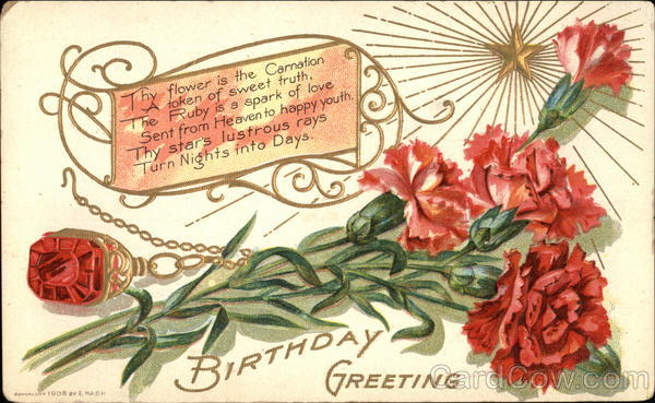 Birthday Greetings with Carnation & Ruby
