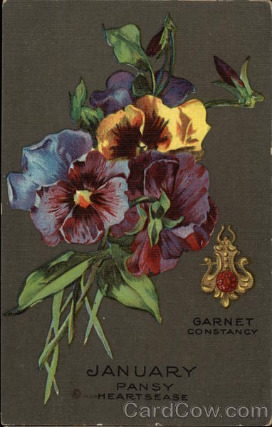 January Pansy Hearts East, Garnet, Constancy Months