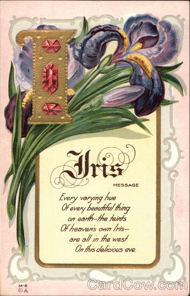 For You Flowers >> Iris Poem Flowers