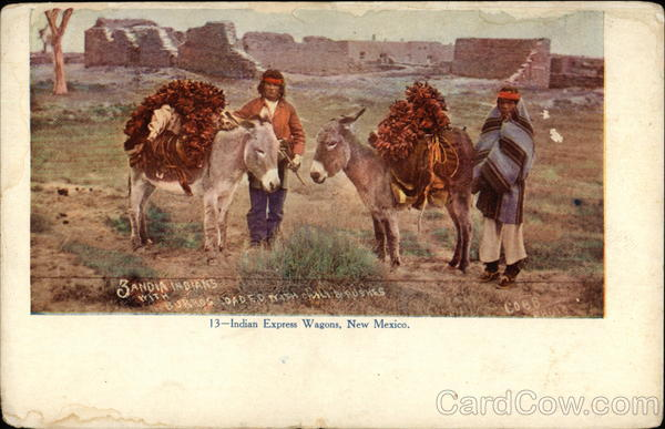 Indian Express Wagons, New Mexico Native Americana