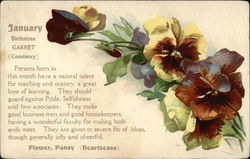 January Birth Month with Pansies