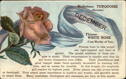 December Birth Month with White Rose