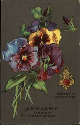 January Pansy Hearts East, Garnet, Constancy