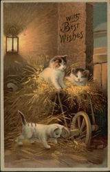 Three Kittens Playing in Hay