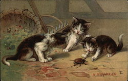 Kittens Playing with a Beetle