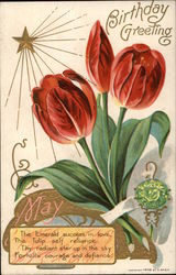 May Birthday Greeting with Emerald & Tulips
