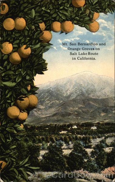 Mt. San Bernardino and Orange Groves on Salt Lake Route in