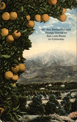 Mt. San Bernardino and Orange Groves on Salt Lake Route in California