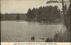 Eagle Lake and the Pine Grove near Mt. Pleasant House