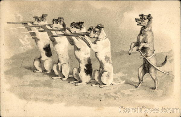 A Company of Dogs Shooting Guns - Firing Line