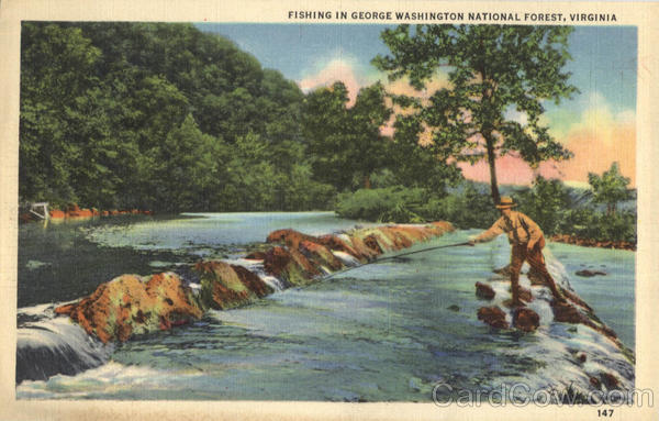 Fishing In George Washington National Forest Virginia