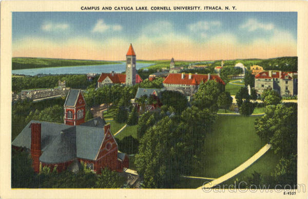 Campus And Cayuga Lake, Cornell University Ithaca New York