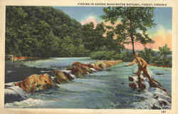 Fishing In George Washington National Forest