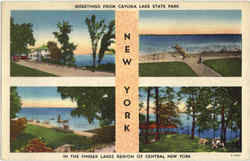 Cayuga Lake State Park, East Windham