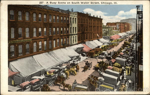 A Busy Scene on South Water Street Chicago Illinois