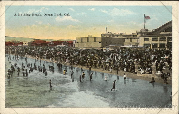 A Bathing Beach Ocean Park California