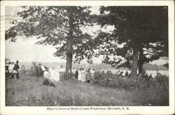 Mayo's Grove at Head of Lake Waukewan