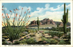 Superstition Mountain and Desert Postcard