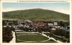 High School, Park and Business Section Postcard