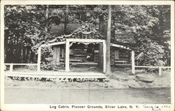 Log Cabin, Pioneer Grounds Postcard