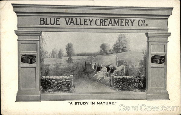 Blue Valley Creamery Co. Chicago Illinois Advertising