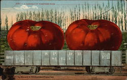 A Carload of Tomatoes From