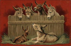 Donkeys looking over Wood Fence