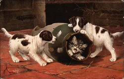 Puppies with Kitten in Crockery