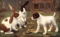 """Among the Bunnies"" with Puppy in the Yard"