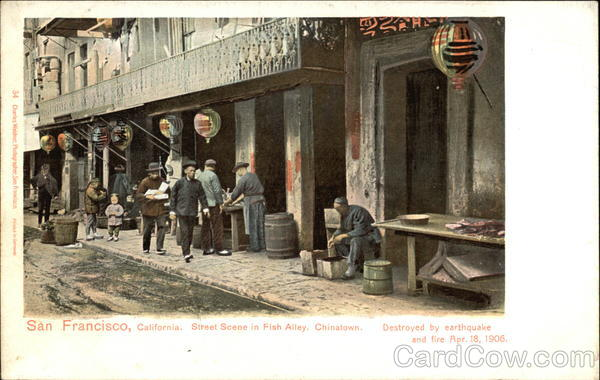 Street Scene in Fish Alley, Chinatown, Destroyed by Earthquake and Fire Apr. 18, 1906 San Francisco California