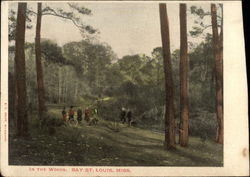 In the Woods, Bay
