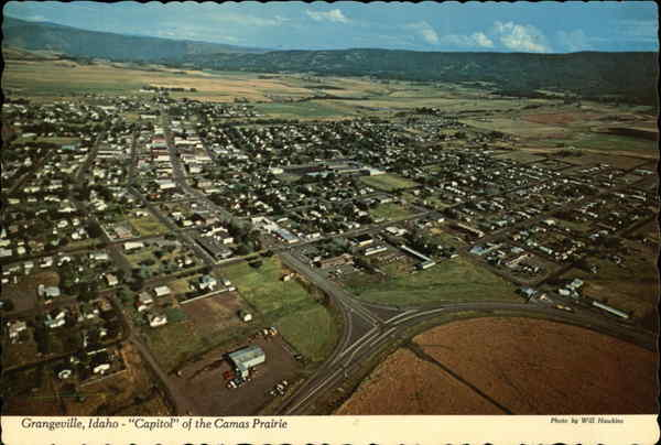 Aerial View of the Capitol of the Camas Prairie Grangeville Idaho