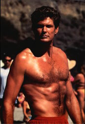 David Hasselhoff as Lt. Mitch Buchannon