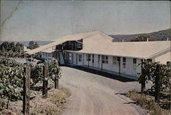 Vinehurst Motel Postcard