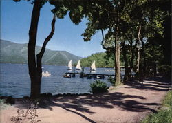 View of Sailboats on Lake Postcard