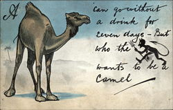 A Camel Can Go Without a Drink for Seven Days - But Who the Devil Wants to be a Camel?