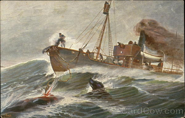 Fishing Boat Spearing Whale on the Waves Boats, Ships