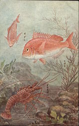 Underwater Scene of Fish and Shrimp