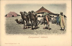 Bedouin Encampment with Camels and Tents