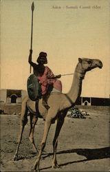 Aden - Somali Camel Rider